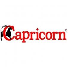capricorn-logo-katiluturgus-1